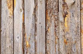 How To Remove Mold From A Wood Fence Hercules Fence Richmond