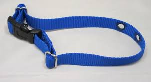 Petsafe Replacement Nylon Strap For Dog Fence Collar 3 4 Wide