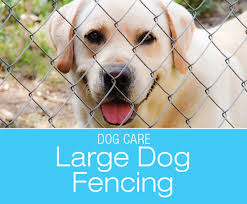 Large Breed Dog Fencing Humane And Effective Fencing