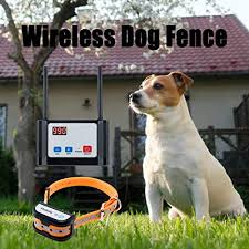 Top 10 Electric Fences Of 2020 Best Reviews Guide