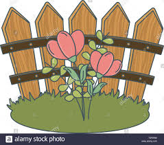 Floral Nature Flowers Garden In Front Wooden Fence Cartoon Vector Illustration Graphic Design Stock Vector Image Art Alamy