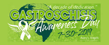 Gastroschisis Awareness Day 2019 Avery S Angels