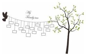 buy wall stickers family tree branches vinyl photo frames