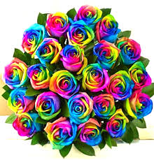 24 rainbow roses bouquet sunlight