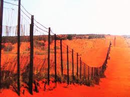 Rabbit Proof Fences