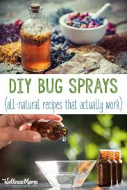 homemade bug spray recipes that work