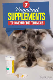 homemade dog food supplements