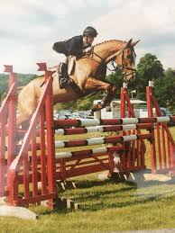 Future Show Jumping clinics: Wed 3 May:... - Polly Williamson | Facebook