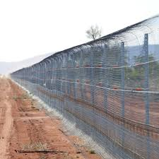 Feral Cat Impact On Native Animal Populations Leads To Construction Of World S Largest Fence Abc News