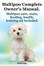 Maltipoo Complete Owner S Manual Maltipoo Care Costs Feeding Health And Training All Included Ebook Walmart Com Walmart Com