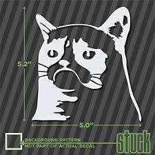 Amazon Com Grumpy Cat Head 5 X 5 2 Vinyl Decal Sticker Die Cut Meme Sad Frown Nope Automotive