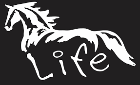 Amazon Com Horse Life 6 White Vinyl Car Decal Art Wall Sticker Usa Horse Shoe Country Home Kitchen