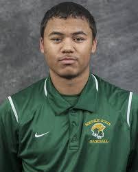 Aaron Robinson - Baseball - Norfolk State University Athletics
