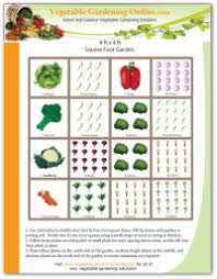 beginner vegetable garden free plans