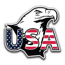 Usa American Bald Eagle Vinyl Decal Sticker Cars Trucks Vans Suvs Walls Cups Laptops 5 Inch Full Color Printed And Laminated Kcd2659 Wantitall