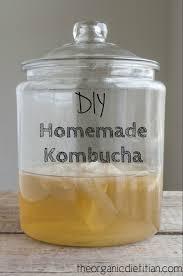 diy homemade kombucha probiotic tea