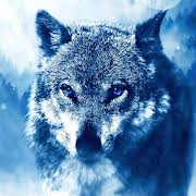 ice wolf live wallpaper for android