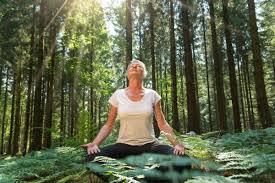 irest bodysensing source yoga