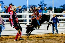 Wild ride for Wesley to reach number one | Gympie Times