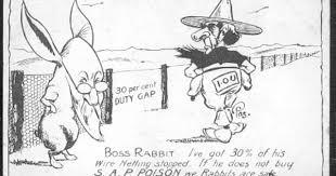 Rabbits The Longest Rabbit Proof Fence 30 Per Cent Duty Gap Book Cover Design Rabbit Book Cover