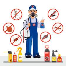 Pest Control Services, Termite Control in Thane, पेस्ट कंट्रोल सर्विस, थाणे