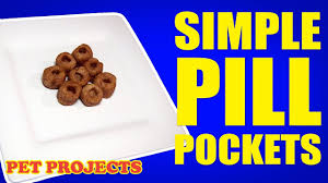 pill pockets in 5 minutes easy diy