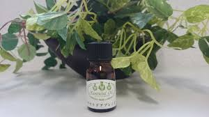 TOKYOCOSMETIC: 10 ml of incense temple herb garden essential oil ...