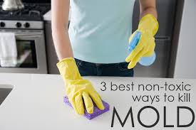 3 non toxic ways to clean mold the