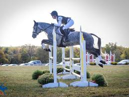 Training the Young Event Horse with Maya Black | News Break