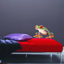 Shop Full Color Small Frog Wildlife Animal Zoo Full Color Wall Decal Sticker Sticker Decal Size 48x48 Overstock 14949542