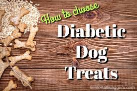 diabetic dog treats choose wisely