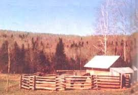 Make A Horse Corral With This Simple Fence Design Mother Earth News