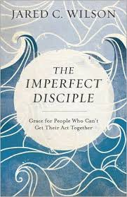 quotes from the imperfect disciple