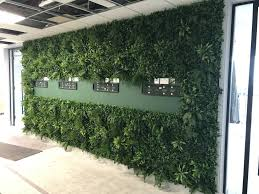 Artificial Green Wall Panel With Variegated Foliage Ivy Palms Grasses Greenplantwalls Co Uk