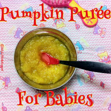 pumpkin puree recipe for es my
