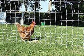 Amazon Com Starkline Electric Poultry Netting Kit Ac Energizer White Blue Poultry Netting 48 164 Home Kitchen