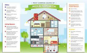 green home solutions an indoor air