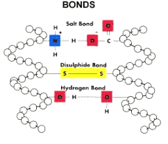 Dave Hornby's Biochemistry Blog Site : A celebration of Cysteine ...