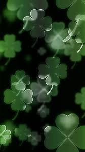 c four leaf clover irish luck