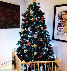 Today Extra Host David Campbell Reveals That He Barricades His Christmas Tree Daily Mail Online