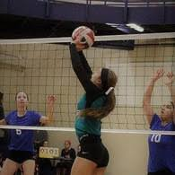 Adeline Williams's Women's Volleyball Recruiting Profile