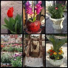 مشتل البستان Home Facebook