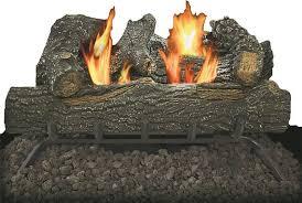 dual fuel vent free gas log set