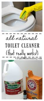 all natural toilet cleaner creative