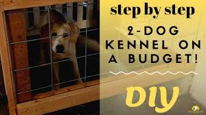Build A Cheap 2 Dog Kennel In Your Garage Youtube