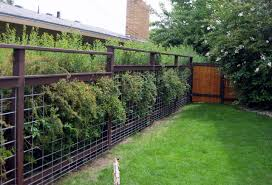 Cattle Panel Fence Diy Procura Home Blog