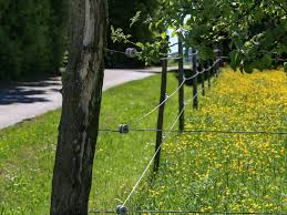 Electric Fences The Pros And Cons Millionacres