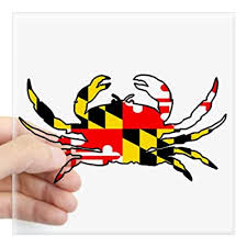 Cafepress Maryland Crab Sticker Square Bumper Sticker Car Decal 3 X3 Small Or 5 X5 Large Buy Products Online With Ubuy Kuwait In Affordable Prices B00pwpfdim