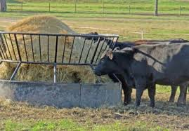 Feeding Management To Minimize Hay Waste Drovers
