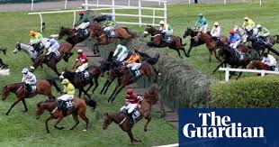Rspca Want Removal Of Killer Fence Becher S Brook At Grand National Grand National 2012 The Guardian